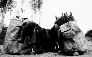 Artisan - treeplanting gear