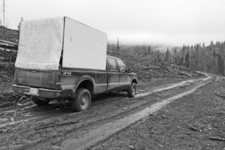 Artisan - parked truck