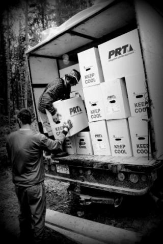 Artisan - unloading truck